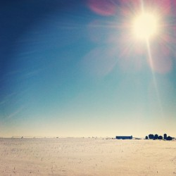 Bluebird day. #aggpfieldwork  #saskatchewan #prairies #snow