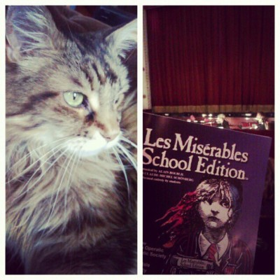 Cats and Les Miserables, perfect recipe for a fun evening! <3 (at New Mills)