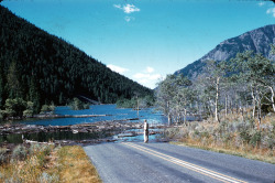 Hebgen Lake, Montana, Earthquake August 1959.