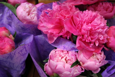 peonies at the reading terminal market | by © Kate Lumpkin | via blusterandfuss