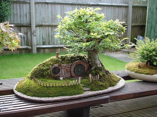 the-absolute-best-gifs:  IT'S A MINI HOBBIT HOLEWITH A BONSAI TREE  This post has been featured on a 1000notes.com blog.