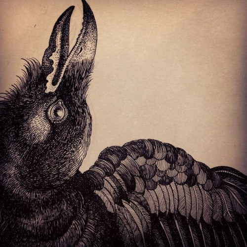 misterbeaudry:  Detail… #drawing #bird #illustration  (at Colonial Park Cemetery playground)