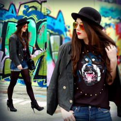 Perfection!Fashion Loaded Dog Shirt #501 #lookbookparty  (by Chloë Sterk)