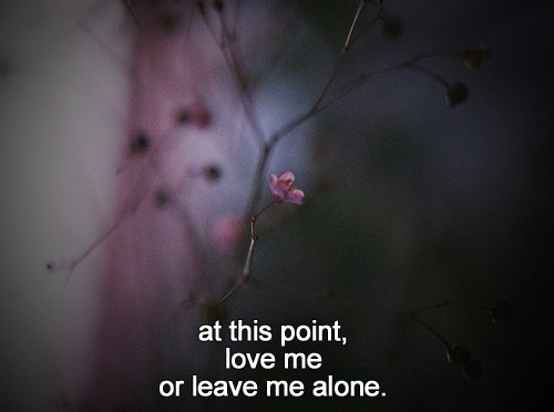 more-issues-than-voque:  m—ermaid:  wilderthanwild:  ☾SOFT GRUNGE BLOG☾  X