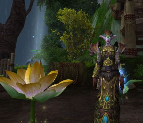 Elizaveta growing golden lotus on her farm. i kinda love how BIG they are.