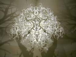 staceythinx:  Forms in Nature by Hilden Diaz is a light sculpture that casts shadows resembling tree branches on the surrounding walls.  WANT. WANTWANTWANT. I must have this.