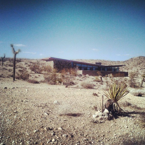 Home sweet home with @vespasixtysix #joshuatree #jackrabbitwash #desertlife