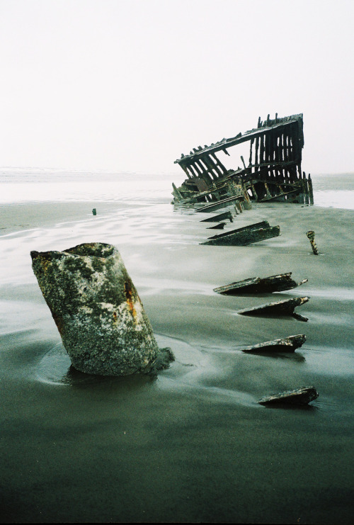 taylormccutchan:  Iredale shipwreck in northern OregonAE-1fuji superia 800