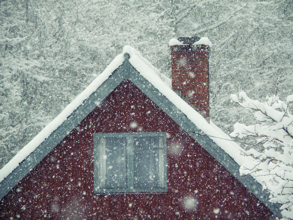 wintercozy:  momentsbetween—sleep:  Snow in January I by ~Saihai