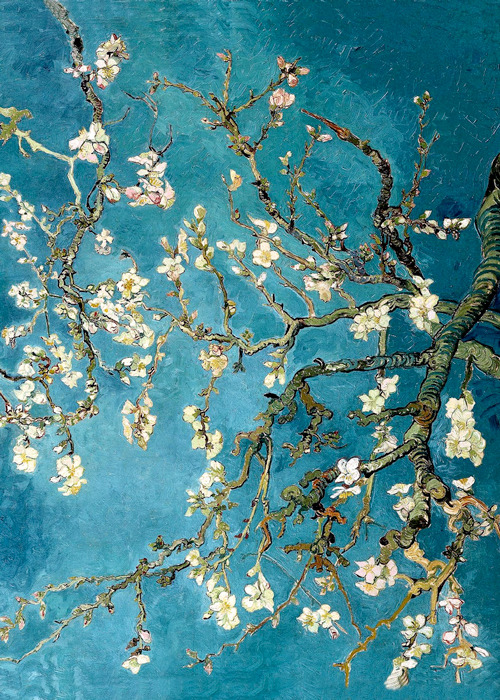 umacasaemtroia:  Vincent Van Gogh - Blossoming Almond Tree