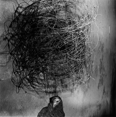 Roger Ballen, Twirling Wires