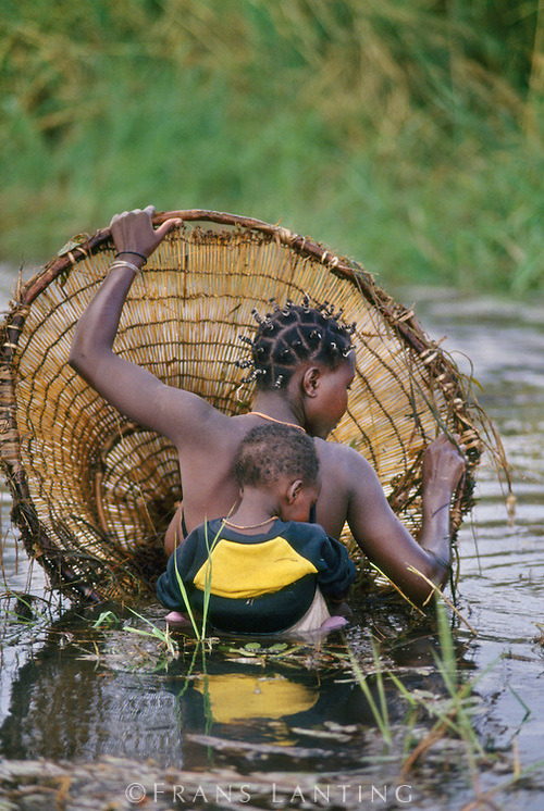 tapio-ca:  Hambukushu woman and child fishing, Okavango Delta, Botswana Photograph by Franz Lanting