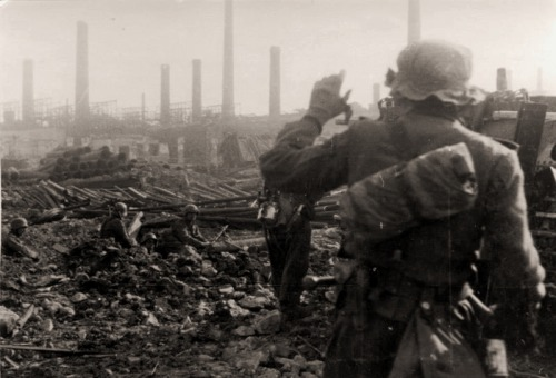 tuftytufts:   German soldiers, Stalingrad. Stalingrad is one of my favourite WW2 battles (insofar as one can enjoy bloodbaths when one ostensibly isn't Elizabeth Báthory) because it's so… war. When I think of war, I think of Stalingrad. Battles being fought for a few inches of concrete, soldiers dying to defend a few feet of broken glass.
