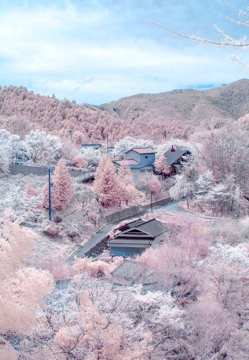 yourlovewasmyturningpage:  Beautiful Japan | via Facebook on @weheartit.com - http://whrt.it/ZbOaFR
