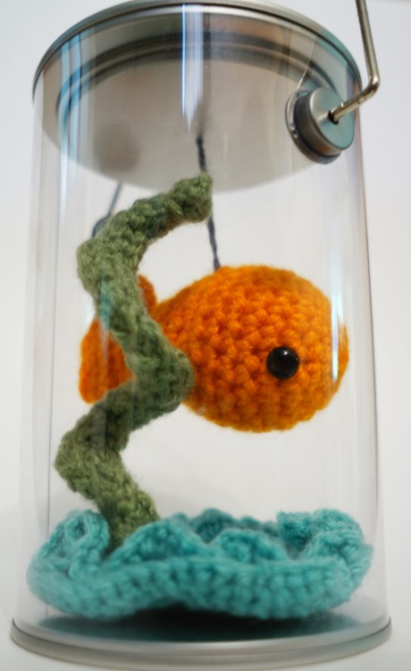 pepperandtaffy:  Project #1: Portable mini-fish can! Easy to maintain and sustainable. -PepperAndTaffy