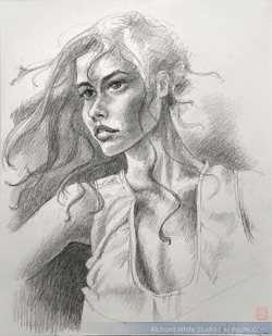 Study 1442  Graphite on paperby Richard White