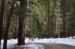 travelbinge:  By Nika Grabareva South Lake Tahoe, USA