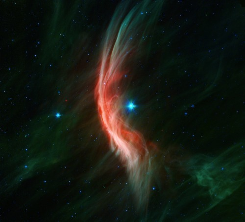 "Whoa.  The giant star Zeta Ophiuchi is having a ""shocking"" effect on the surrounding dust clouds in this infrared image from NASA's Spitzer Space Telescope. Stellar winds flowing out from this fast-moving star are making ripples in the dust as it approaches, creating a bow shock seen as glowing gossamer threads, which, for this star, are only seen in infrared light."