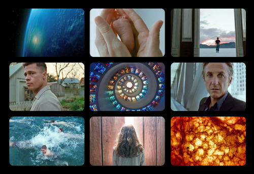 9 Film Frames: The Tree of Life