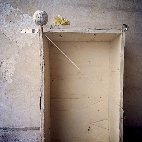 abigaildoan / Salvaged crate with ball of string and magnolia blossom (Sofia / 2013) photo by Abigail Doan