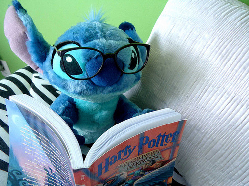 Stitch with Novel of Harry Potter