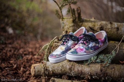 dohil:  Supreme x Vans - Power, Corruption & Lies