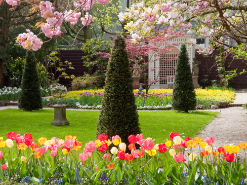 Amsterdam Tulip Gardens | The Mayor's Residence