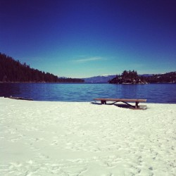 Winter picnic in Tahoe. #latergram