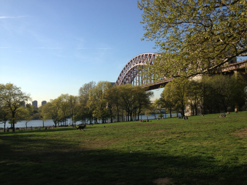 Good evening, Astoria Park.