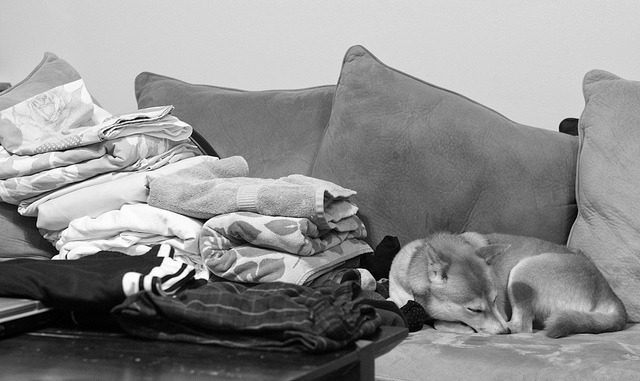 Laundry Day on Flickr. she got tired after folding all that laundry