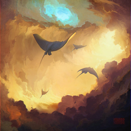 alltailnolegs:  radiotrash:  vlynx:  RHADS  Reblog sky whale for my bro  I… I just realized what if I'm playing Black Flag and the game glitches this will either end with me screaming and crying at sharks or burning incense and kowtowing to the almighty sky whale god