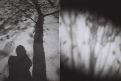 Self and shadows…. Diana Mini set in half frame California Spring 2012
