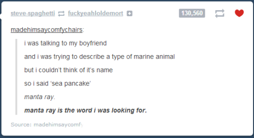 morrissarty:  the best of tumblr confusion