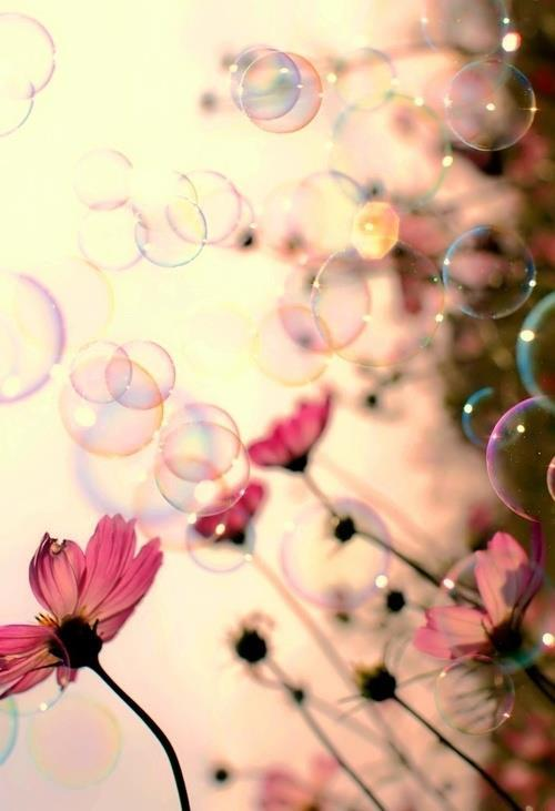 lettymeow:  lovely bubbles