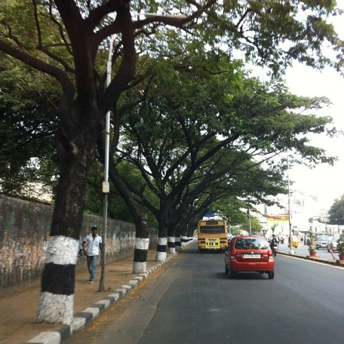 A very misleading picture of the road/traffic in #chennai #madras #tamilnadu #india ;=)