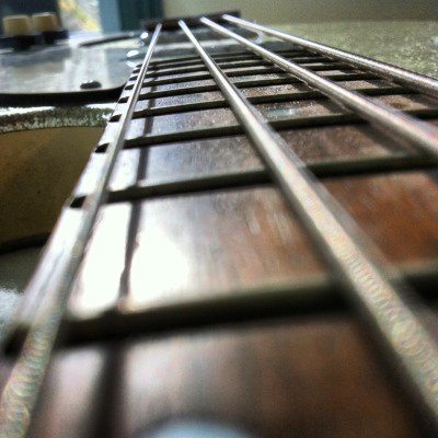 LongNeck Fretboard   Photo by Tom Banks