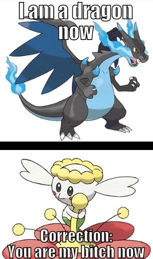 Pokemon X Pokemon Y Pokemon Mega Charizard X Flabébé