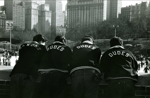 The Dudes and Saxon, Central Park, 1955 © Sid Kaplan