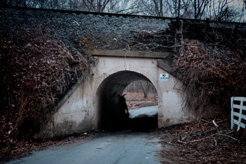 "The Bunny Man Bridge - The legend of the Bunny Man Bridge says that during the days of the Civil War, an asylum was built in Clifton, Virginia, creating an outburst in the towns around the area and making the institution close down. During the process of transferring the inmates to other asylums, some of them managed to escape and they hid in the woods and forests around the area. Some of them were very dangerous and delusional.  Some of these inmates were Douglas Griffen and Marcus Lawster. While the police were looking for them, they found a trail of mutilated bunnies that led into the woods to a tunnel bridge crossing a creek.  In the entrance of the tunnel Marcus was found hanging, and attached to his dead body was a note that read: ""You will not find me, no matter how hard you try!"" and it was signed by the Bunny Man.  The legend says that if you are brave enough and go to the tunnel around midnight, the Bunny Man will grab you, kill you and hang you from the entrance of the tunnel. Some strange cases have happened in the bridge, some of them happened Halloween night, when three teenagers, a young woman and two men were found hanging from the entrance, and all of them had a note signed by the Bunny Man. Also in 2001, six local students went to the bridge to look for the truth about the Bunny Man, but left the forest when they found various mutilated bunnies and saw a strange shadow around the forest."