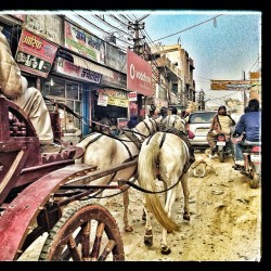India real time: horse carts share a dusty road with motorcycles and cars running @2 kmph outside the Opulence mall (at Opulent Mall)