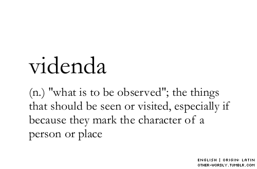 other-wordly:  pronunciation | vi-'den-da  Thinking about this!