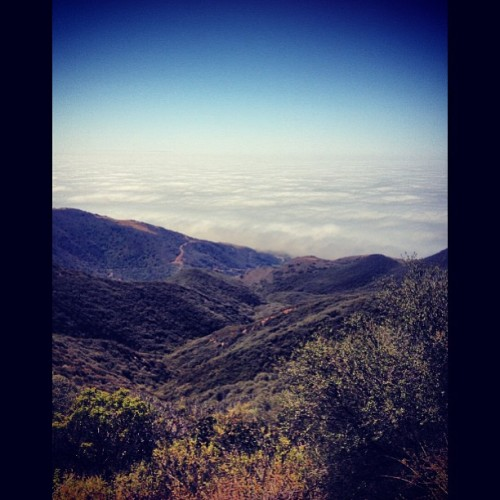 Far from reality, above the clouds.😌☁👼 #malibu #hikes
