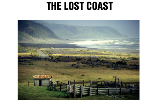triponbroknbeats:  The Lost Coast in Cali   My favorite part of Cali <3