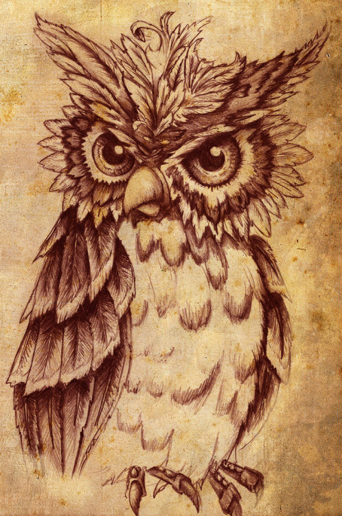 city-of-vultures:  Owlby ~RILLAH