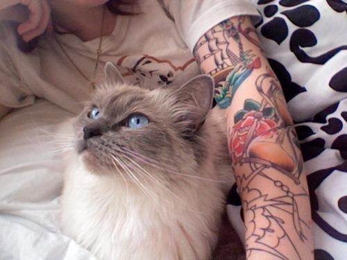 cat cute pale prety tattoo