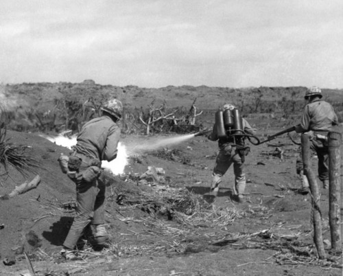 Burning them out on Iwo Jima