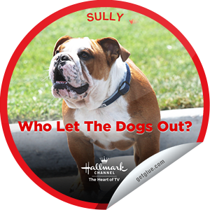 "I just unlocked the Who Let the Dogs Out: Sully sticker on GetGlue                      1949 others have also unlocked the Who Let the Dogs Out: Sully sticker on GetGlue.com                  Meet Sully! He's named after Captain ""Sully"" Sullenberger who landed the plane in the Hudson River in 2009. Sully loves playing baseball and skateboarding. He's currently considering getting his pilot's license. :) Watch him & all his canine buddies in the new Hallmark Channel Original Series ""WHO LET THE DOGS OUT"" Friday's 1p/12C.  Share this one proudly. It's from our friends at Hallmark Channel."
