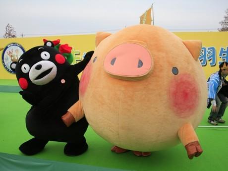 kumamonfan:  behold: the fattest pig!