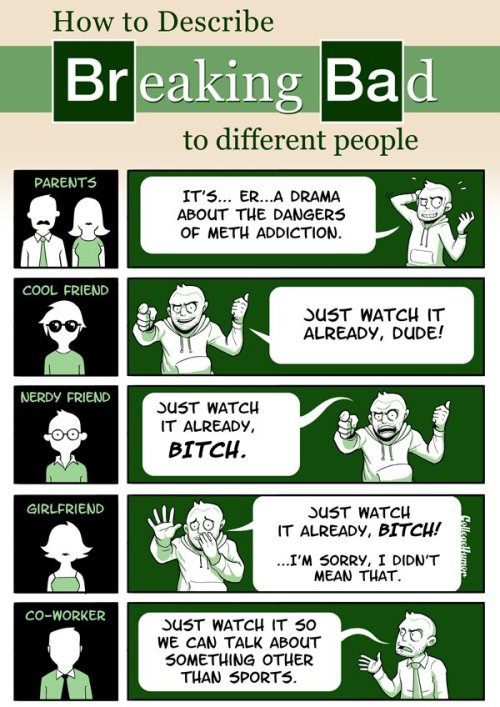 dailybreakingbad:  How to describe BreakingBad to anyone.http://dailybreakingbad.tumblr.com/  This this a thousand times this