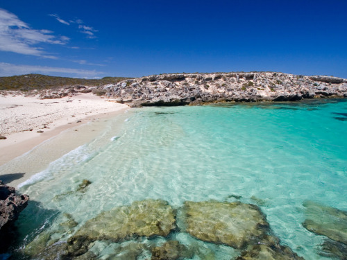 No Car Island Vacations | Rottnest Island, Australia